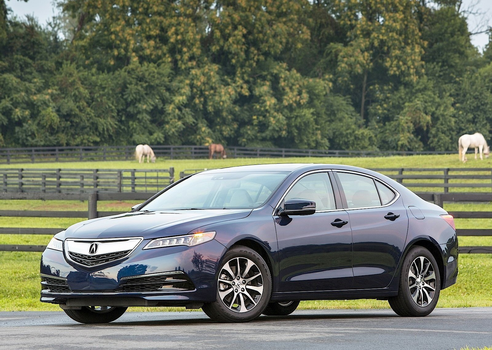 acura tlx specs 2015 2016 2017 2018 autoevolution. Black Bedroom Furniture Sets. Home Design Ideas
