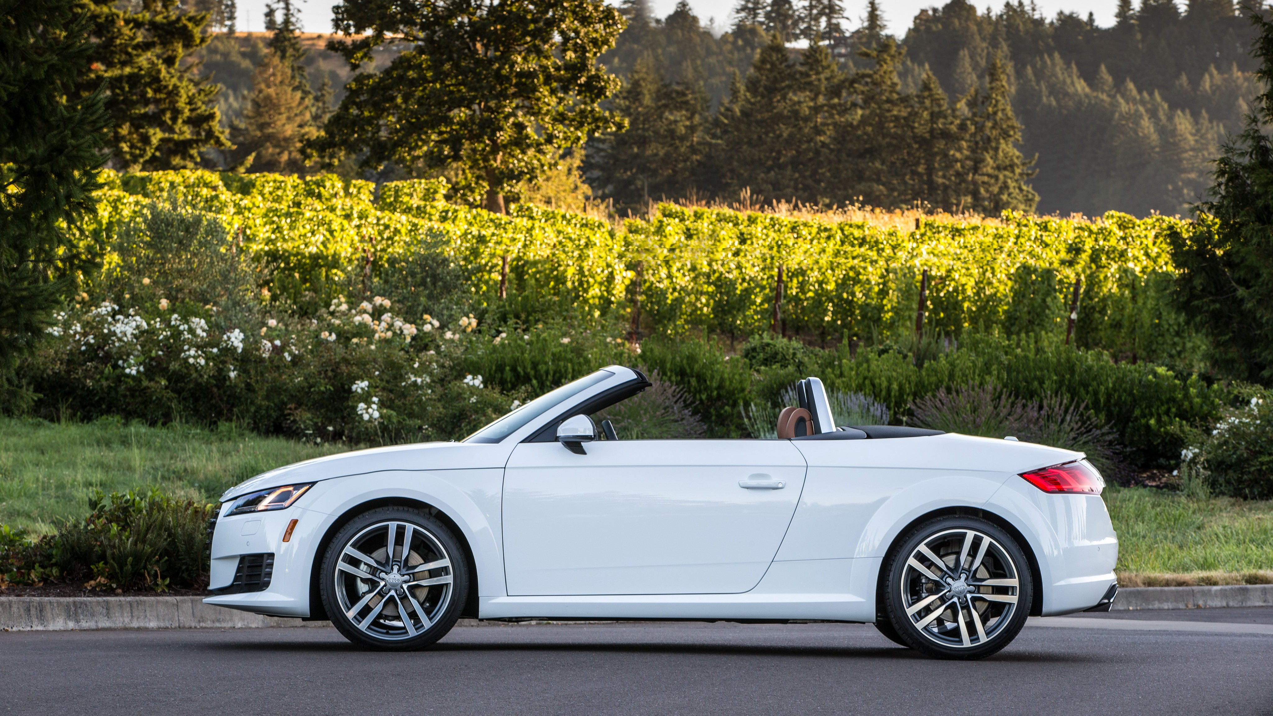 audi tt roadster specs 2014 2015 2016 2017 2018 autoevolution. Black Bedroom Furniture Sets. Home Design Ideas