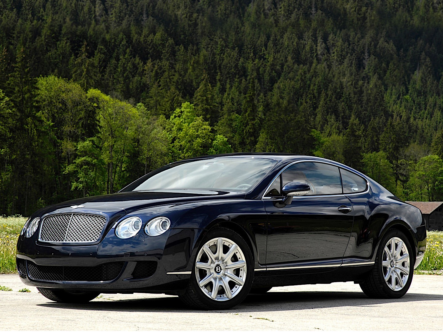 bentley continental gt specs photos 2003 2004 2005. Black Bedroom Furniture Sets. Home Design Ideas
