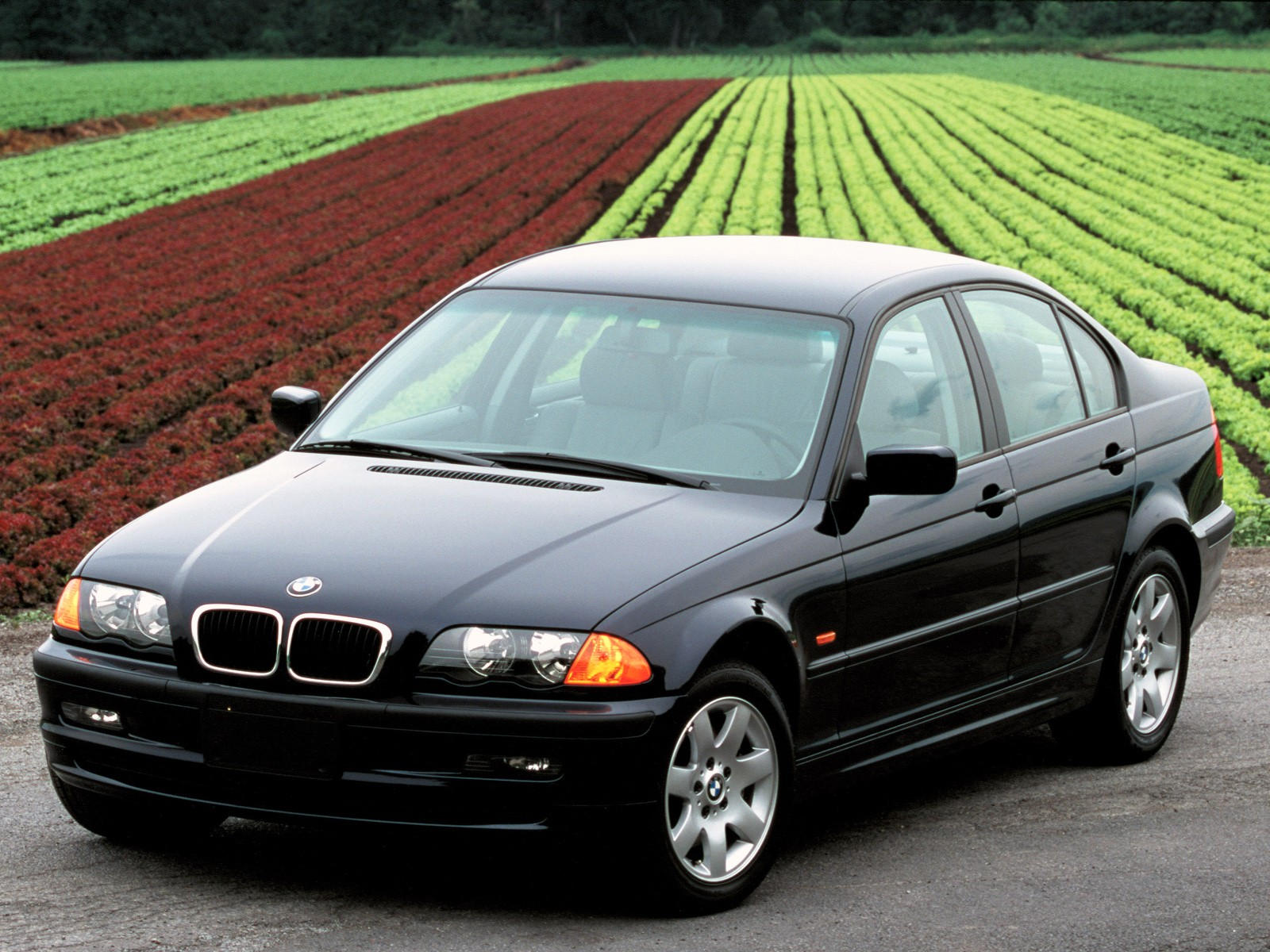 1998 bmw 318i engines with Bmw 3 Series E46 1998 on 2012 Cadillac Srx Electrical Wiring Diagram further NZ6d 6518 as well Bmw 3 Series Sedan E36 1991 additionally Bmw 3 Series E46 1998 together with P 7286 Intake Rubber Boot From Throttle Body To Manifold E36 318i 96 98 Z3 19.