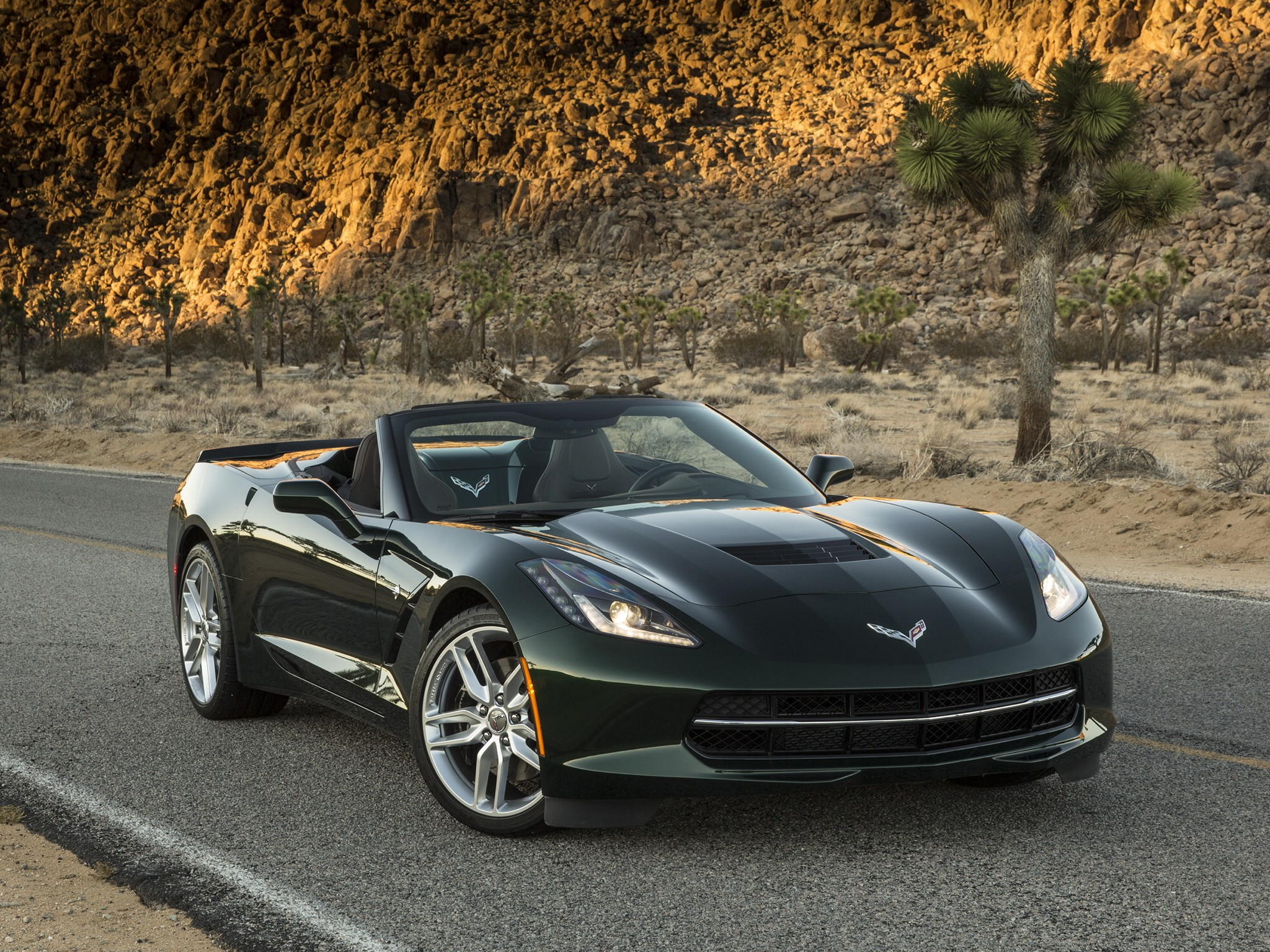 chevrolet corvette stingray convertible c7 2013 2014 2015 2016. Cars Review. Best American Auto & Cars Review