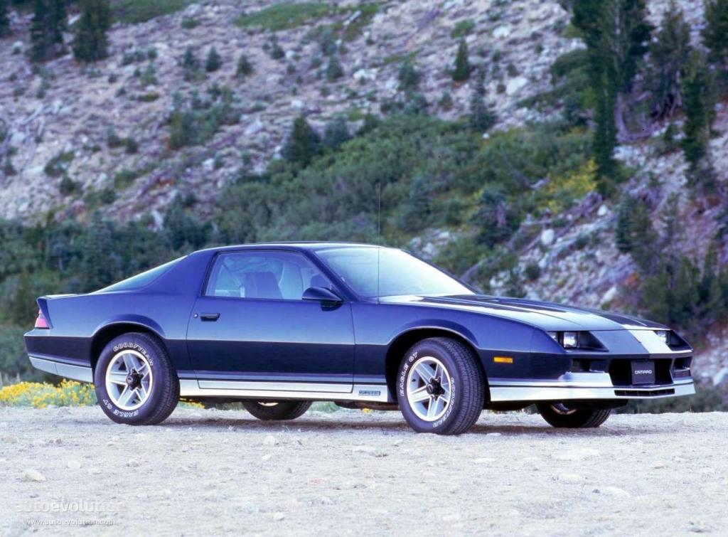 Chevroletcamaro on 1989 Dodge Throttle Body