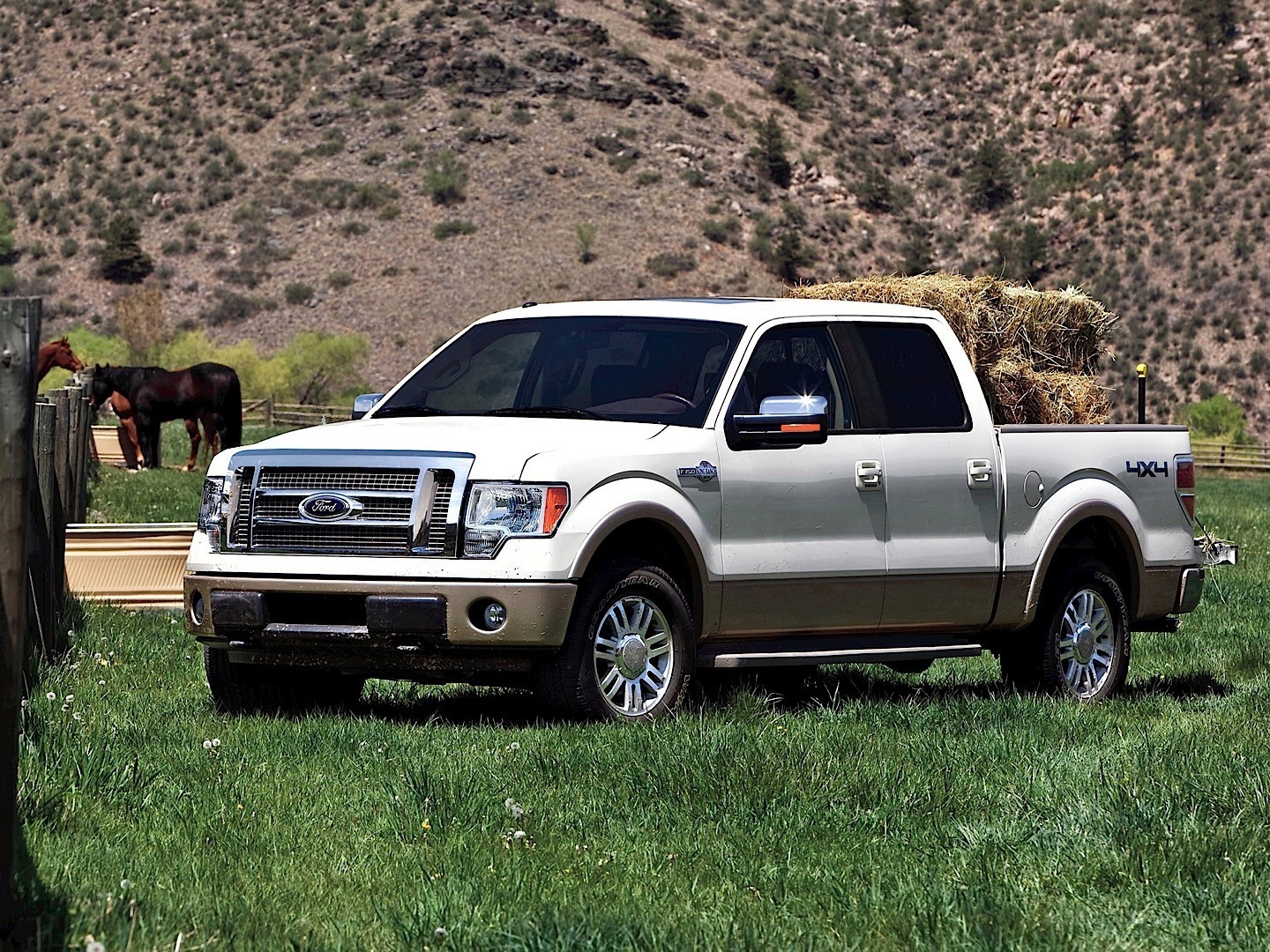 2010 F150 Platinum >> FORD F-150 Super Crew - 2009, 2010, 2011, 2012, 2013 - autoevolution