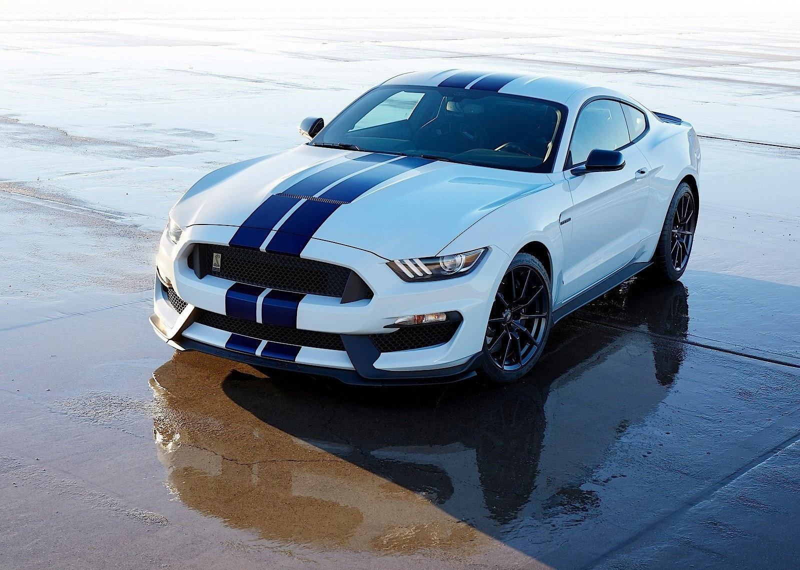 Ford Mustang Shelby Gt350 2015 2016 2017 Autoevolution