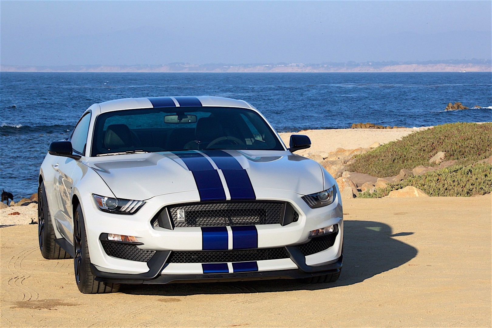 2017 Ford Shelby Gt350 Interior >> FORD Mustang Shelby GT350 specs - 2015, 2016, 2017, 2018 - autoevolution