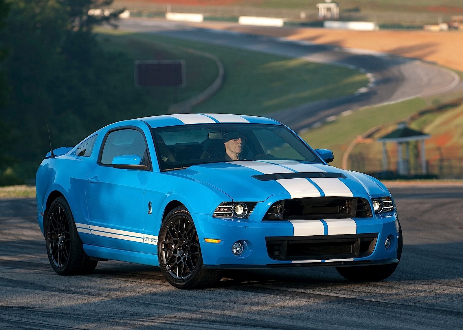 ford mustang shelby gt500 2012 2013 2014 2015 2016 2017 autoevolution. Black Bedroom Furniture Sets. Home Design Ideas