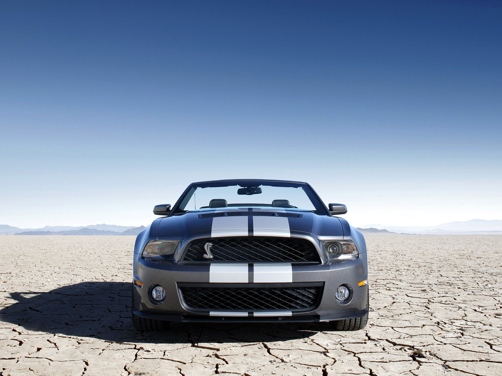Ford Mustang Shelby Gt500 Convertible 2009 2010 2011