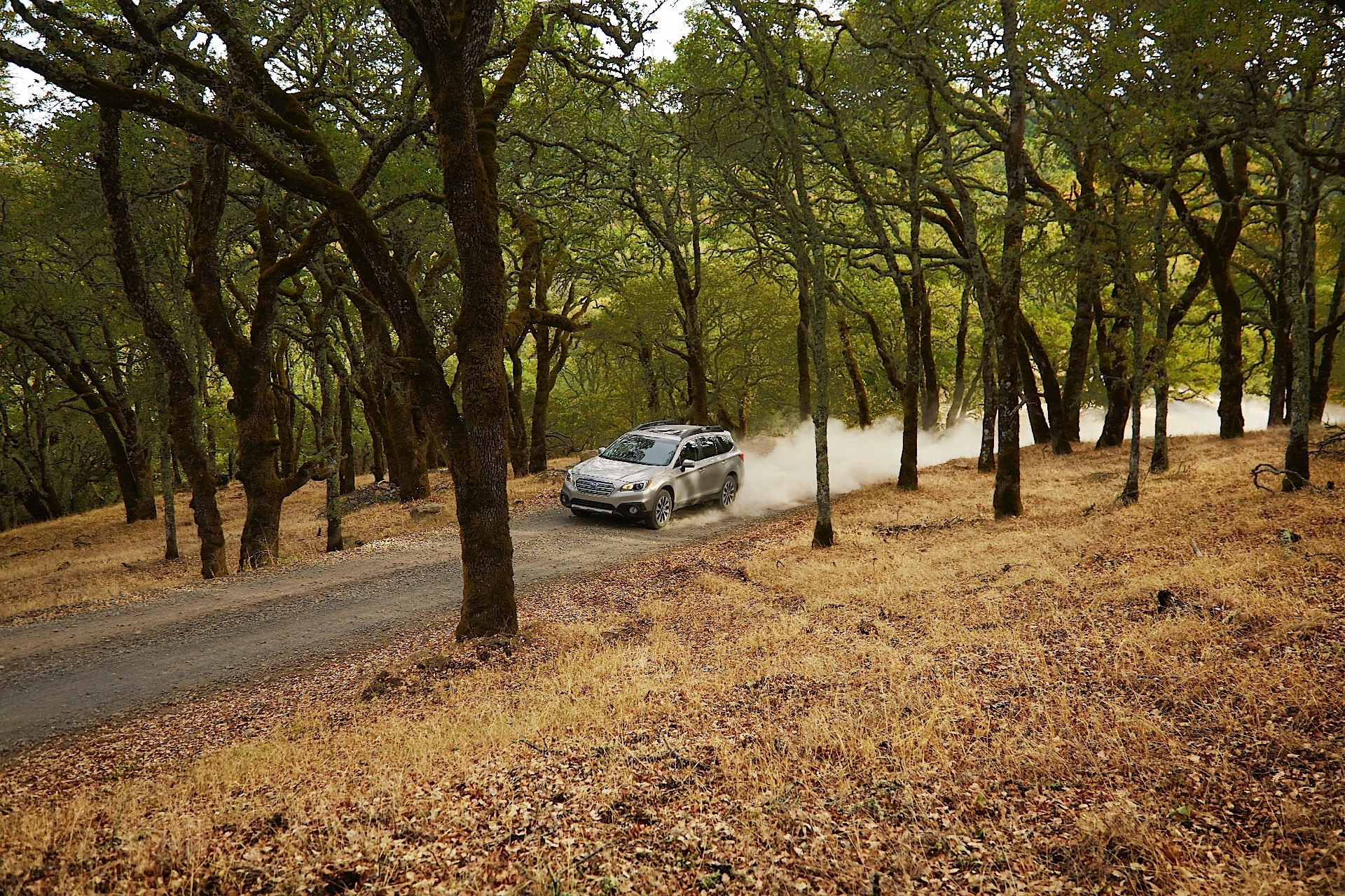 Subaru Outback Specs 2014 2015 2016 2017 2018