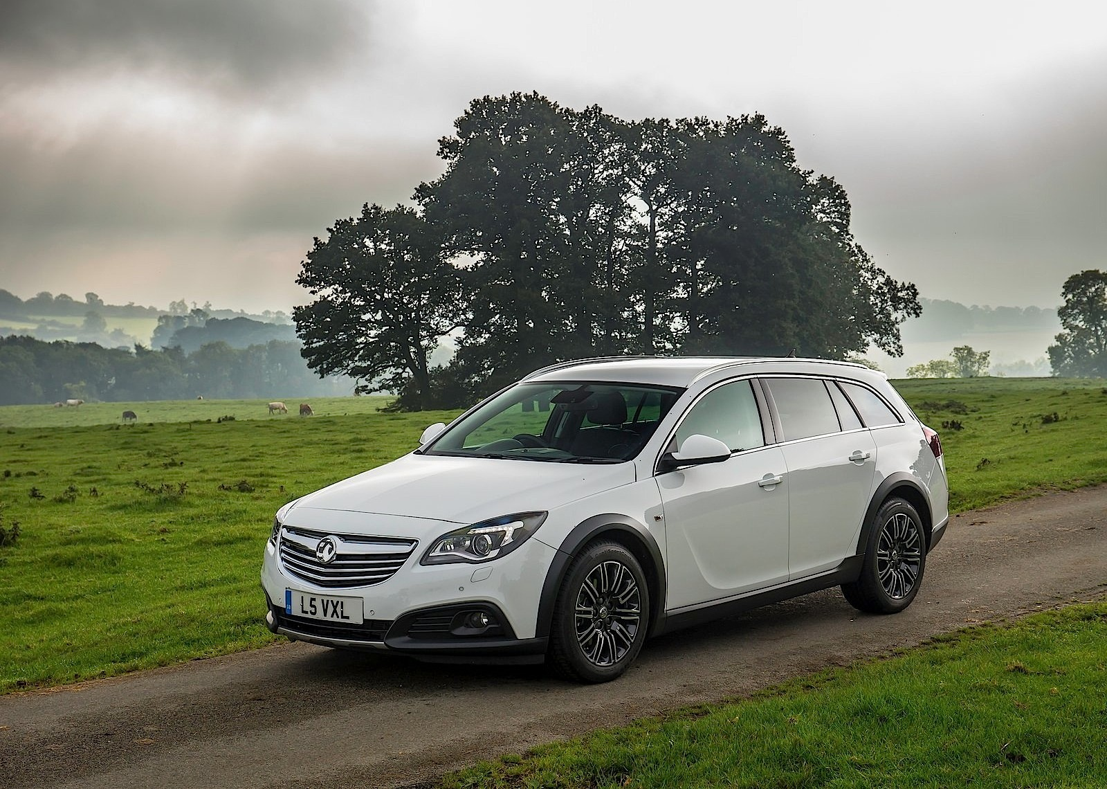 vauxhall insignia country tourer 2013 2014 2015 2016 2017 autoevolution. Black Bedroom Furniture Sets. Home Design Ideas