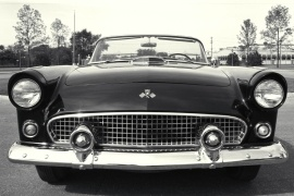 FORD Thunderbird (1956)