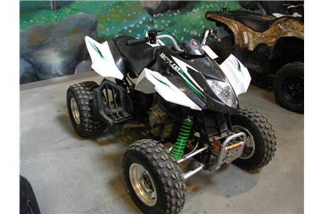 arctic cat 300 dvx specs 2008 2009 autoevolution. Black Bedroom Furniture Sets. Home Design Ideas