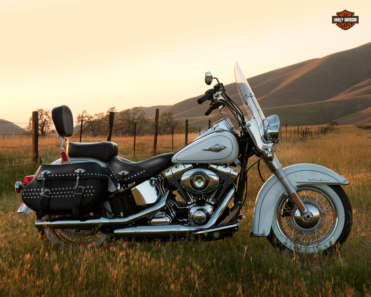 Tranny for hd softail