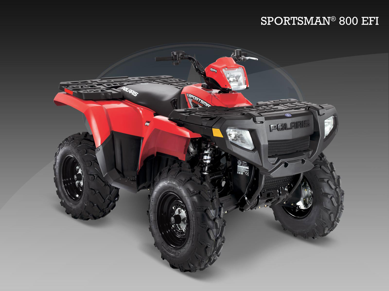 Polaris Sportsman 800 - 2009  2010