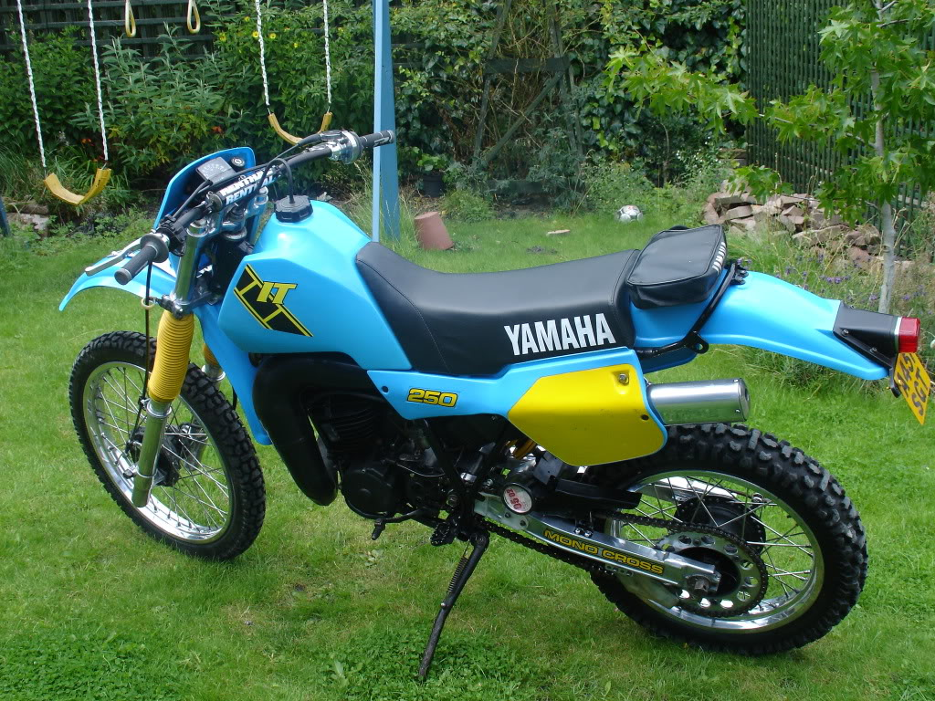 it250 exam review Back in november when i bought my first motorcyclethis is it,a virago 250i stored it at a friend over the winter and until i got my license well it's stil.