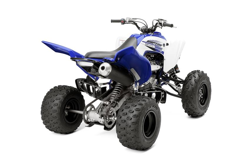 Yamaha Raptor  Engine Horsepower