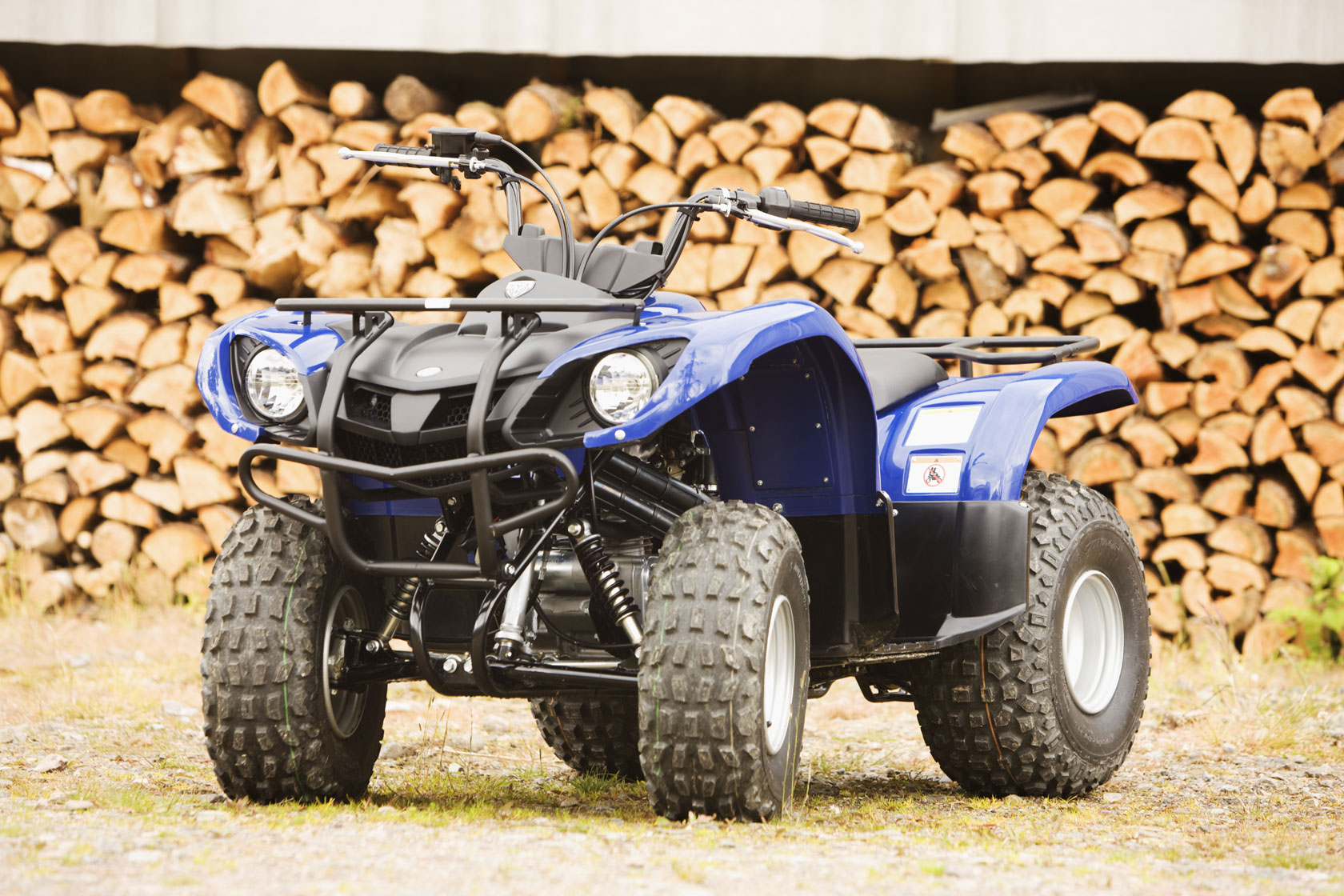 06 Yamaha Grizzly 125 Wiring Diagram Atv Yamaha Youth Grizzly .