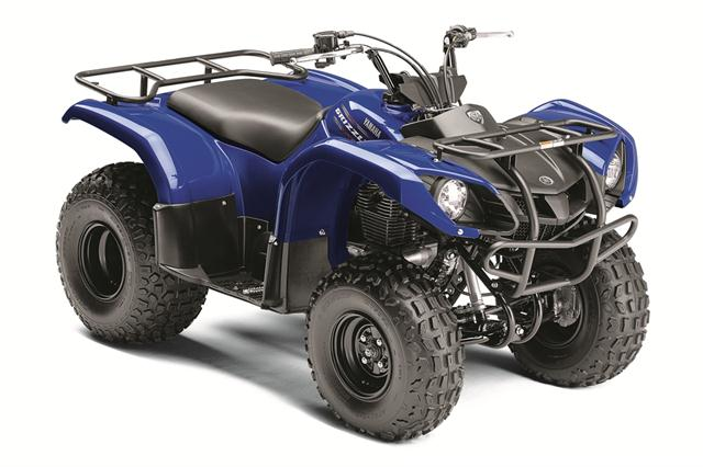 yamaha grizzly 125 automatic 2011 2012 autoevolution. Black Bedroom Furniture Sets. Home Design Ideas