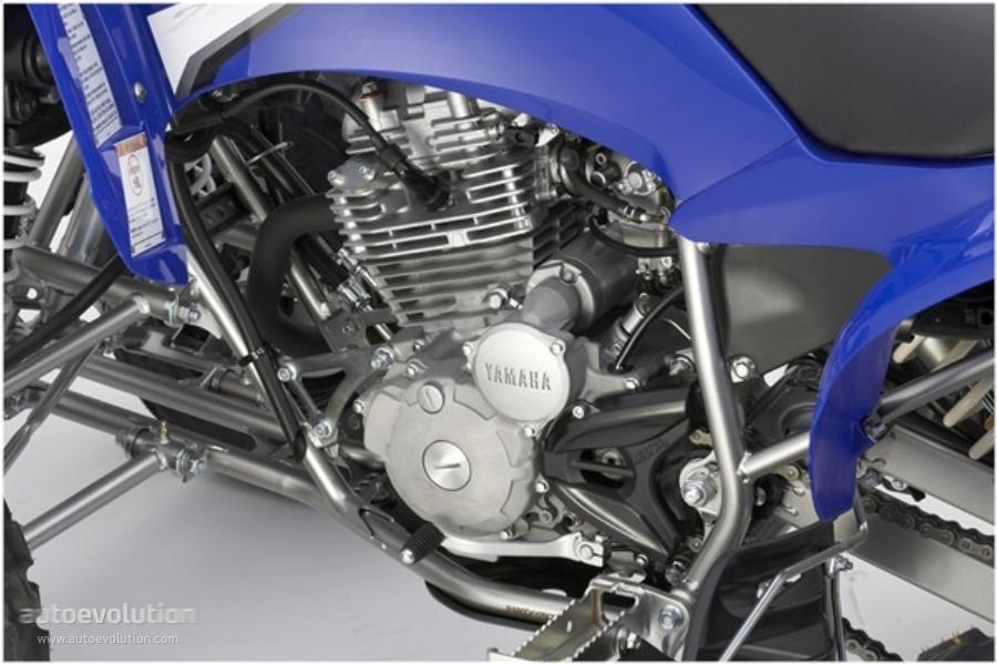 Yamaha Raptor 250 2008 2009 2010 2011 2012 2013