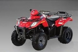 ARCTIC CAT DVX 250 (2006 - 2007)