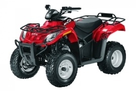 ARCTIC CAT 300 (2009 - 2010)