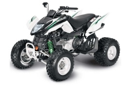 ARCTIC CAT 300 DVX (2009 - 2010)