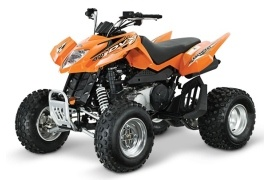 ARCTIC CAT 300 DVX (2012 - 2013)