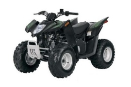 ARCTIC CAT 50 DVX Automatic (2007 - 2008)