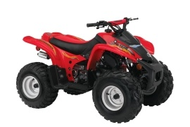 CAN-AM/ BRP Bombardier DS90 4-stroke (2004 - 2005)