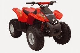 CAN-AM/ BRP Bombardier DS90 4-stroke (2005 - 2006)