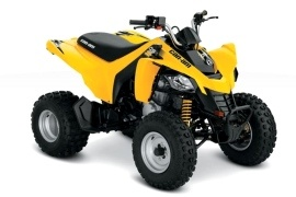 CAN-AM/ BRP DS 250 (2009 - 2010)