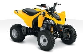CAN-AM/ BRP DS 250 (2010 - 2011)