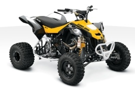 CAN-AM/ BRP DS 450 X MX (2010 - 2011)