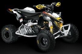 CAN-AM/ BRP DS 450 X XC (2008 - 2009)