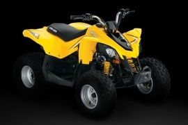 CAN-AM/ BRP DS 90 (2008 - 2009)