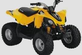 CAN-AM/ BRP DS 90 (2009 - 2010)