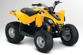 CAN-AM/ BRP DS 90 (2012 - 2013)