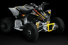 CAN-AM/ BRP DS 90 X (2008 - 2009)