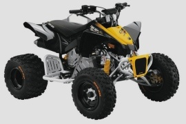 CAN-AM/ BRP DS 90 X (2009 - 2010)