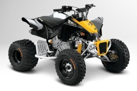CAN-AM/ BRP DS 90 X (2012 - 2013)