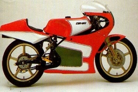 CAN-AM/ BRP 250 Road Racer (1984 - 1985)
