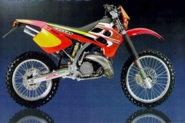 GAS GAS ENDURO EC 250 (1998 - 2002)