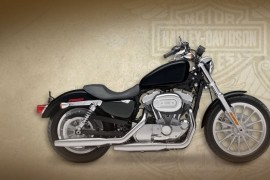 Harley Livewire Seat Height