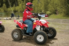 POLARIS Sportsman 90 (2008 - 2009)
