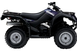 SUZUKI Ozark 250 5-Speed (2009 - 2010)