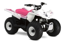 SUZUKI QuadSport Z50 Special Edition (2008 - 2009)