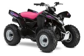 SUZUKI QuadSport Z90 Special Edition (2008 - 2009)