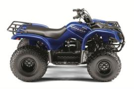 Yamaha Grizzly Models Autoevolution