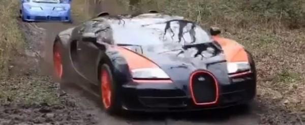 But Why Ferrari vs. Bugatti vs. Lamborghini Collector Cars