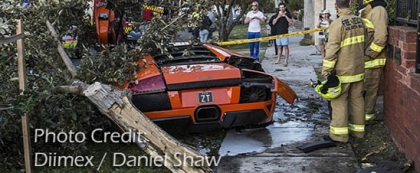 Lamborghini Murcielago Owner Uproots Tree While Trying To Sell His