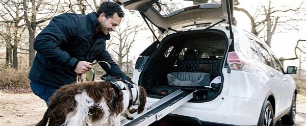Nissan Builds The Ultimate Car For Dogs, You Can\'t Have It ...